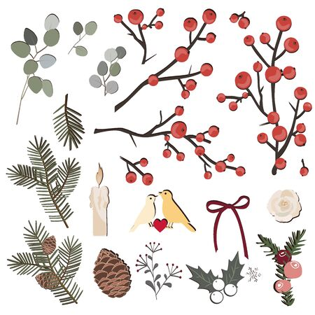 Hand drawn vector herbal set with pine branches and cones, berds, eucaluptys, and berries. Christmas design elements collection Archivio Fotografico - 135645888