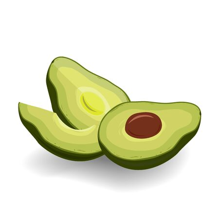 Cut in half avocado on white background. Vegetarian oils source, design elements. Vector illustration Ilustracja