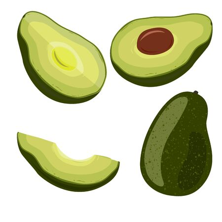 Avocado set on white background. Vegetarian oils source, design elements for packaging or cooking. Vector illustration