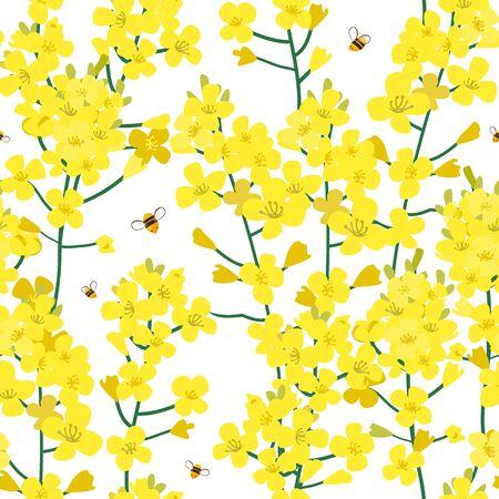 Seamless rape plant pattern, vector flower background. Texture for print, spring summer fashion, textile design, fabric, honey shop website, wallpaper Ilustracje wektorowe