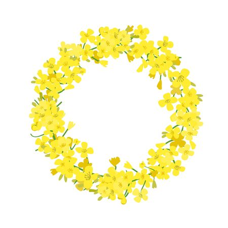 Canola wreath, Rapeseed garland blossom flowers card. Vector template. Flowering colza chaplet. Brassica napus crown. Blooming yellow rape.