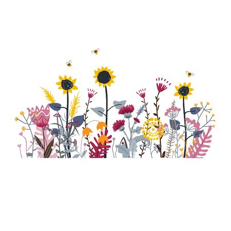 Wild and honey meadow flowers scene. Vector nature background with hand drawn wild herbs, flowers and leaves on white. Vettoriali