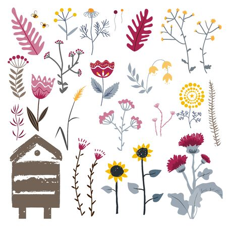 Meadow herbs isolated on white, vector collection. Plants set. Beehive, bees, and doodle hand drawn plants