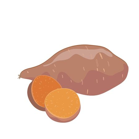 Yam or Sweet potatoes isolated on white background, whole vegetable and sliced one. Vector illustration.