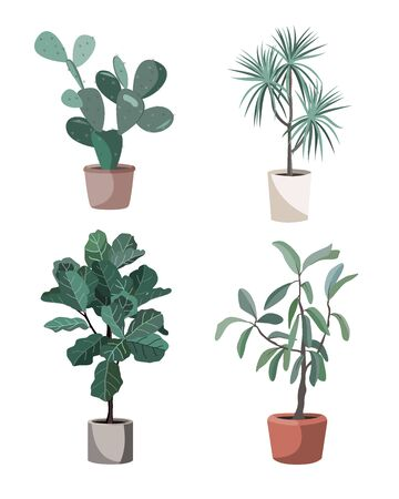 Indoor houseplants vector. Potted home plants illustration. Stylish greenery in pots for the flat design interior decoration. Ficus Lyrata, prickly pear, dracaena