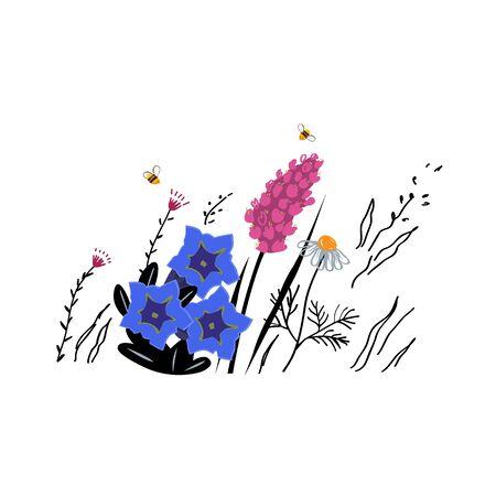 Mountain flowers vector sketch illustration. Alpine honey concept. 向量圖像