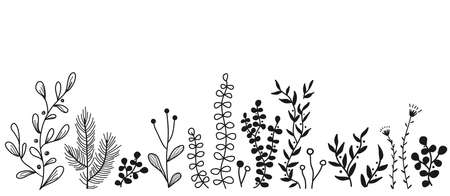 Vector floral border with doodle forest and meadow plants. Hand drawn abstract background for frames, posters, textile