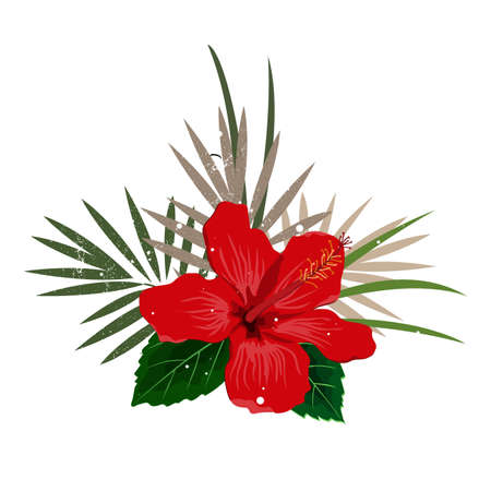 Bouquet composition with red hibiscus flower and palm leaves, flat vector illustration. Tropical exotic Hawaii plants isolated on white Vector Illustration