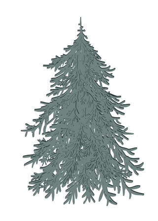 Hand drawn doodle Merry Christmas tree icon. Holiday symbol. Cartoon sketch element, colorful undecorated Xmas tree isolated on white background. Vector illustration