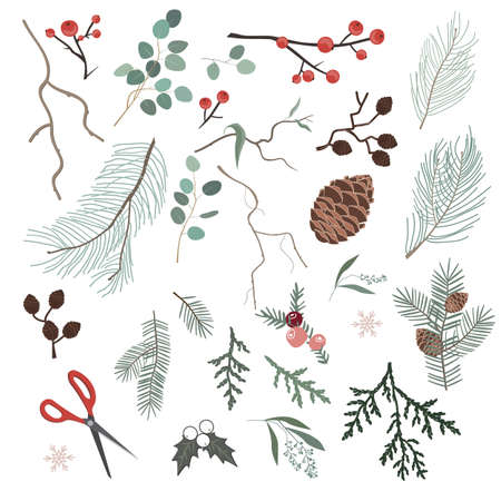 Botanical Christmas elements for making Xmas wreath or other home decor. Winter brunches, flowers, leaves, and pinecones isolated on white backgrounds. Vector set Illustration