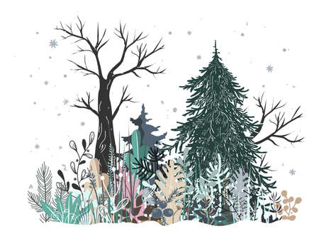 Winter Forest Landscape with Pine, Fir tree, and grass. Vector illustration
