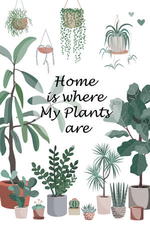Cute homeplant pots, cactuses and succulents. Home is where my plants are text. Flat style vector illustration Ilustração