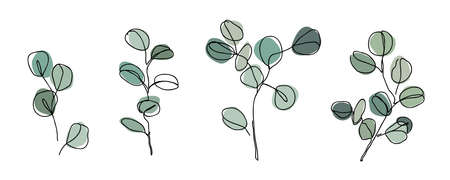 Set of Eucalyptus branches in modern single line art style. Continuous line drawing, aesthetic contour for home decor, posters, wall art, packaging. Ilustração