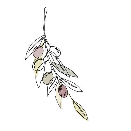 Single continuous line drawing of organic olive fruit brunch. Modern one line draw design graphic vector illustration