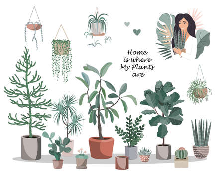Home is where my plants are poster. Cute house plant pots and baskets, cactuses and succulents, and pretty girl with potted flower. Flat style vector illustration