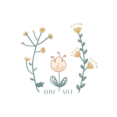 Meadow floral flowers vector illustration. Scandinavian folksy flower bunch clip art isolated on white.