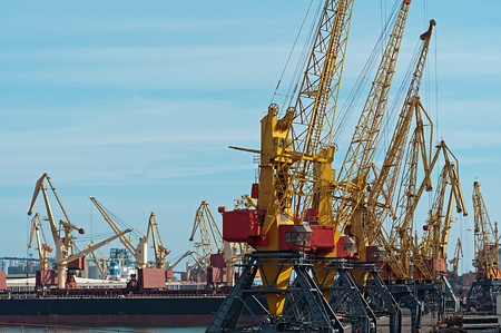 Yellow cranes stand on one lane in harbor Stock Photo - 22536602