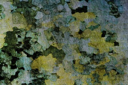 sycamore: texture on the basis of sycamore bark