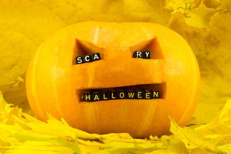 Pumpkin for a holiday Halloween concept Фото со стока
