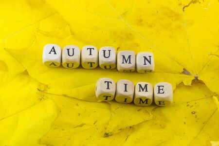 Autumn time speech at the background of leaves
