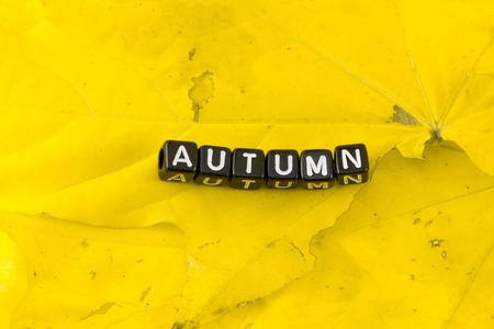 September, November and December this autumn