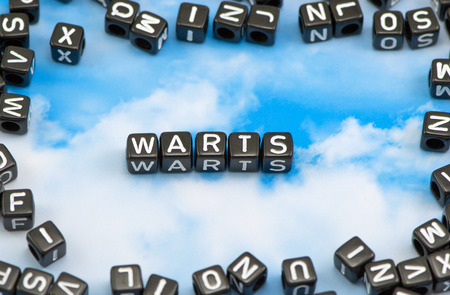 The word Warts on the sky background
