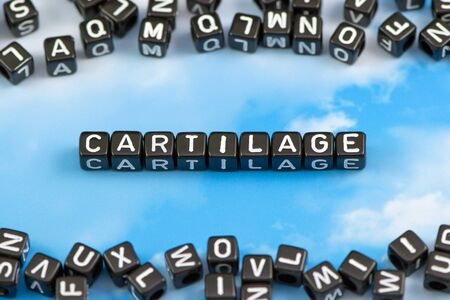 osteoarthritis: The word Cartilage on the sky background Stock Photo