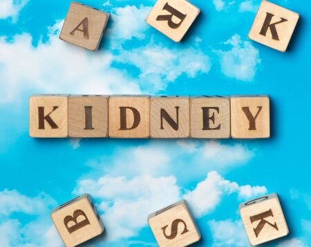 The word kidney on the sky background