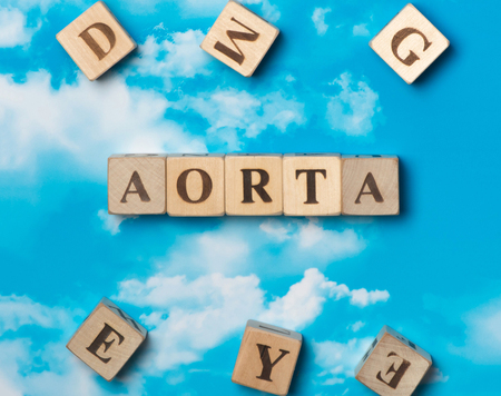 carotid: The word Aorta on the sky background