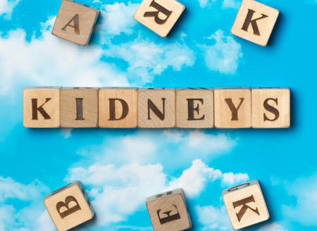 renal stone: The word kidneys on the sky background