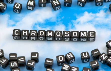 chromosome x y: The word chromosome on the sky background Stock Photo