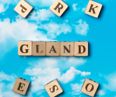 The word Gland on the sky background Stock Photo
