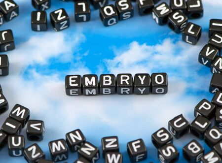The word embryo on the sky background