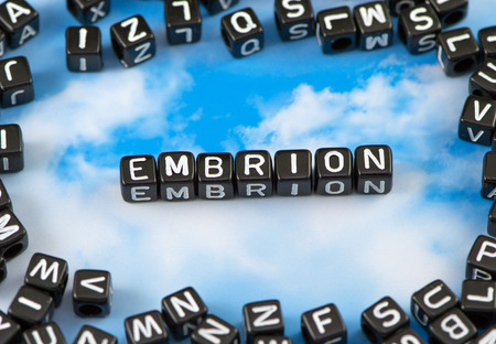 The word embrion on the sky background
