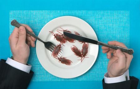 Eating of cockroaches Stock Photo