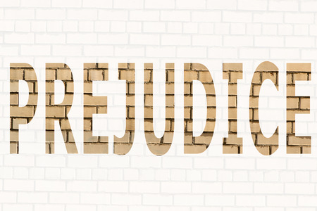 The word prejudice on a white background