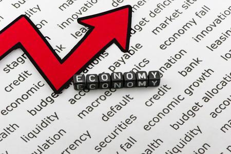 Economy text