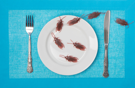 Cockroaches in a plate Imagens