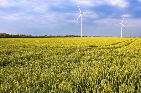 Pure energy - windmills in a wheat field Stock Photo - 3209458