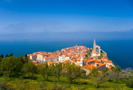 Beautiful Town on the Coast (Piran) photo