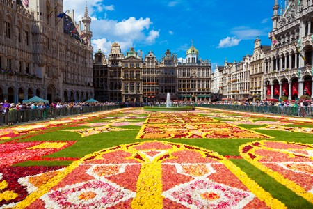 benelux: BRUSSELS - AUGUST 14TH, 2010. Every two years thousands of visitors come to see the floral carpet on the famous Grand Place square.  The floral composition takes over 2,000 square meters and almost 800,000 begonias have been used.