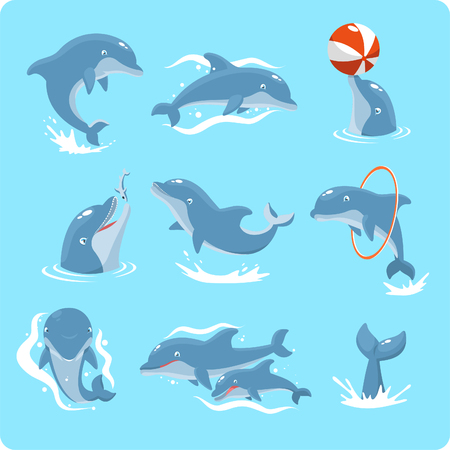 sea life centre: Nine Dolphin set collection, with dolphin playing with ball, with red ring, jumping, two dolphins, and swimming vector illustration.