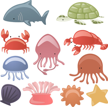 sea anemone: Various Sea life Animals shark, Turtle, scrub, octopus, oyster, dragonfly, shell, lobster, starfish vector illustration. Illustration
