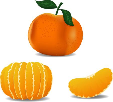 Tangerine cartoon vector illustration set