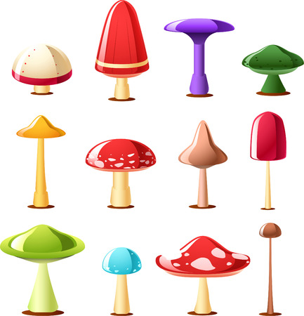 fleshy: Mushroom toadstool fungus cartoon icon illustration set