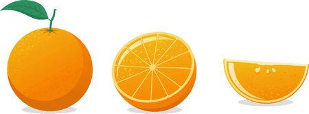 photorealism: Orange cartoon vector illustration
