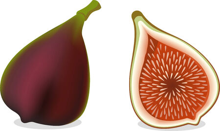 fig vector illustration, hole and half.