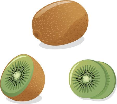 small size: Kiwi ilustraci�n de dibujos animados de vectores Vectores
