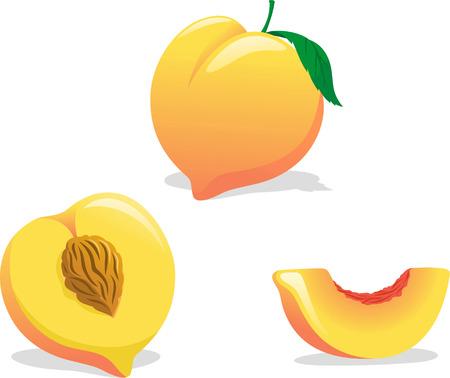 Peach illustration cartoons
