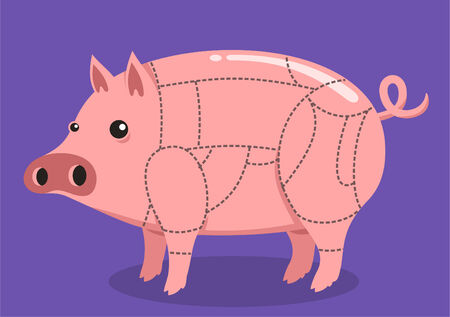 Pork Cuts pig cut cartoon illustration Çizim
